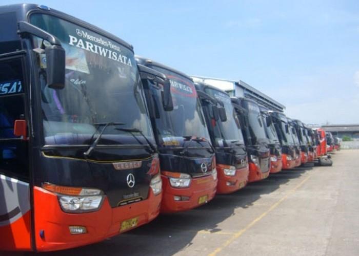 Beli Tiket Bus Untuk Mudik?